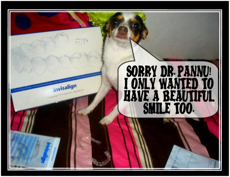 P5270241edit.dental